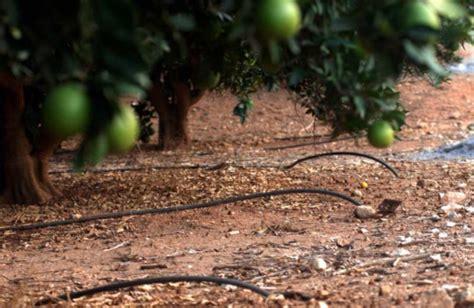 Agricultura destina 7,6 millones de euros a 14 proyectos ...