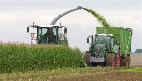 Agricultura Española: lo que aún no sabes sobre las ...