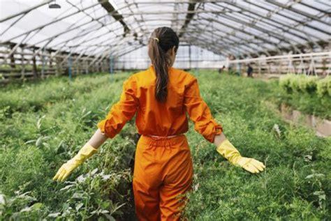 Agricultura, Ganadería y Desarrollo Rural concede más de 9 ...