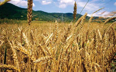 Agricultura responde a Castilla La Mancha que sus críticas ...