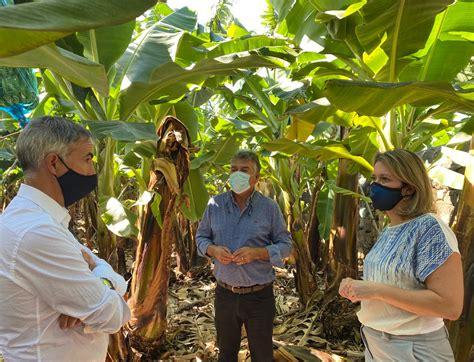 Agricultura y ASPA impulsan un proyecto para el ahorro de ...