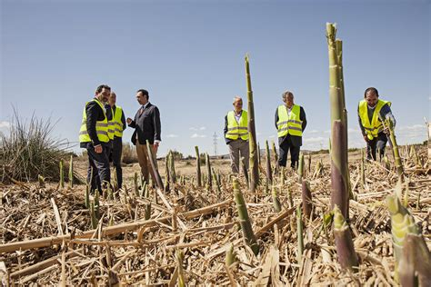 Agricultura y Heineken España restaurarán el Barranco del ...