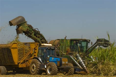 Agricultural output in São Paulo State grew more than 90% ...