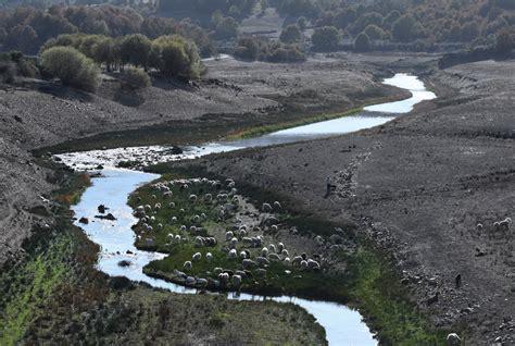 Agua: España, el país en el que quien contamina el agua no ...