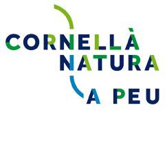 Ajuntament de Cornellà de Llobregat   Cornellà a Peu   Guia