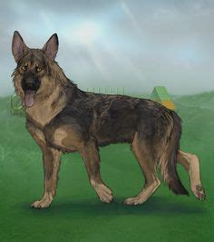 Alacrity, a virtual dog game feature June Monthly Items ...