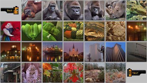Album: New Orleans Zoo, Riverfront, LA College Station, TX ...