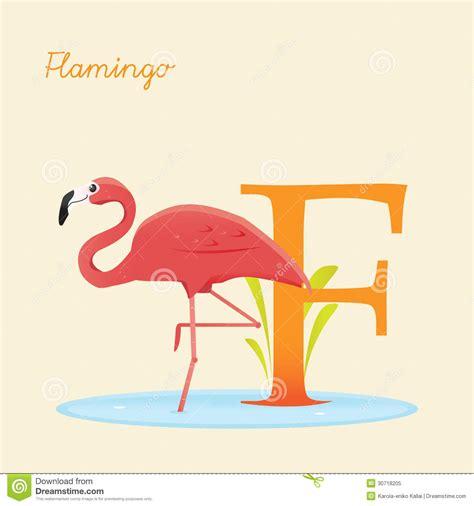Alfabeto Animal Con El Flamenco Ilustración del Vector ...