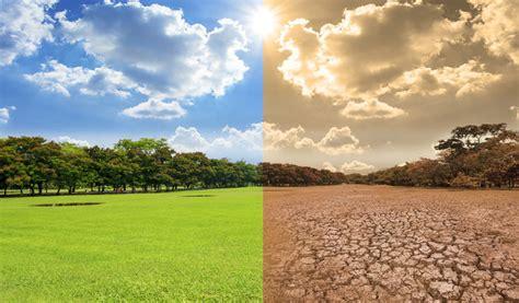 Algunos efectos del cambio climático   ¡Cuidemos el planeta!