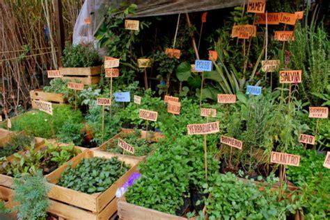 Algunos secretos y usos tradicionales de las plantas ...