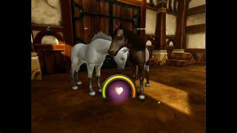 [Alicia online]   Horse Mating racing game  앨리샤 온라인   말 ...