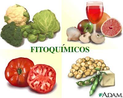 Alimentación y cáncer   Alimentos protectores frente al ...