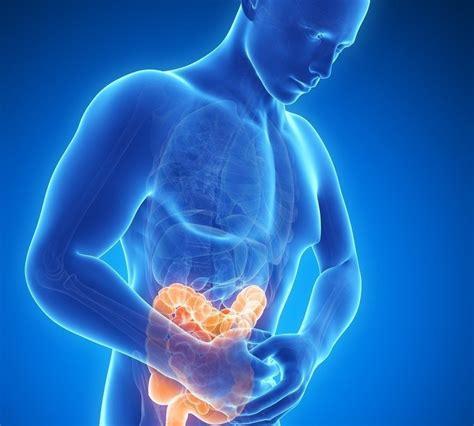 Alimentos evitan los gases estomacales!!!   Faddi Nassar ...