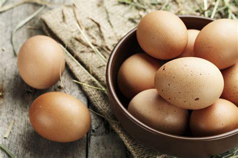 Alimentos ricos en yodo para mejorar el funcionamiento de ...