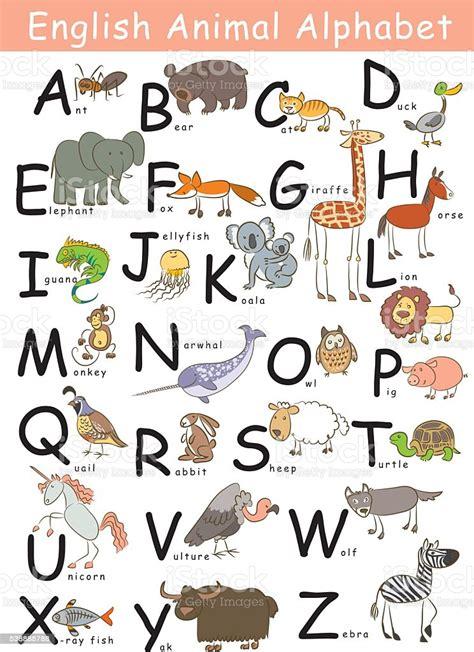 Alphabet Anglais Animal Vecteurs libres de droits et plus ...