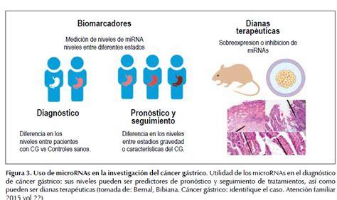 Alteración en la regulación de microRNAs en el cáncer ...