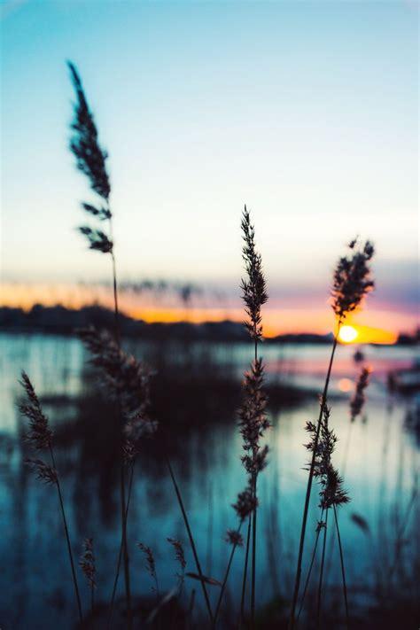 Amanecer | Paisajes | Fotografia naturaleza, Fotografia ...
