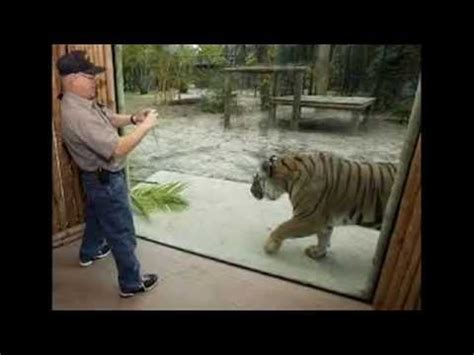 Amazing Italy zoo   Famous Italy zoo of the world   Zoo in ...