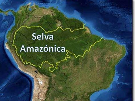 AMBIENTES: Selva Amazónica 6 A
