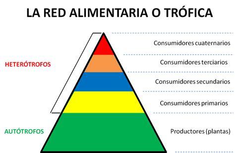 Ámbito Científico Tecnológico IES Cuenca Minera: Redes ...