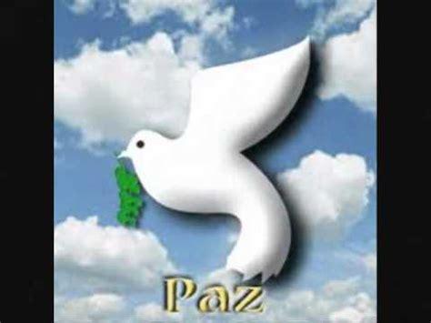 Amor y Paz  frases    YouTube
