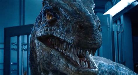 An Interview With Blue, A Velociraptor From 'Fallen Kingdom'