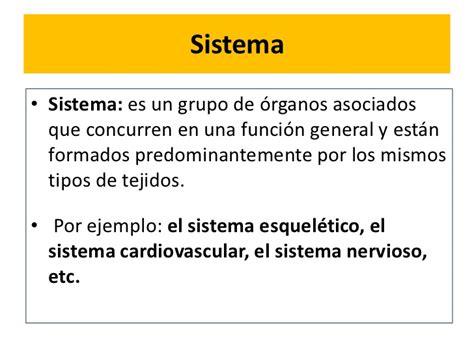 Anatomia Sistemas o aparatos