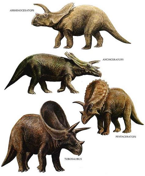 Ancient and Extinct Reptile Types   The Dinosaurs | Animal ...