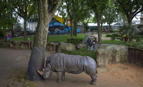 "Animal rights: Barcelona's push for an ""animalist"" zoo ..."