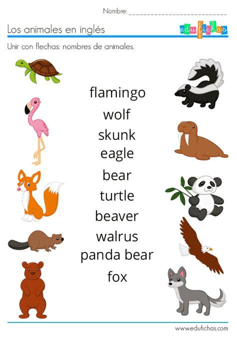 ANIMALES EN INGLÉS | Vocabulario + Ejercicios + Flashcards