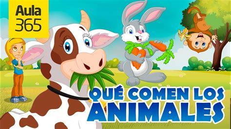 Animales Herbívoros, Carnívoros y Omnívoros | Videos ...