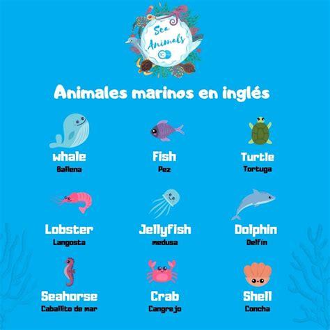 Animales marinos en inglés. Sea animals   IC Idiomas. Tu ...