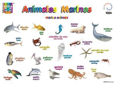 Animales marinos / Marine animals