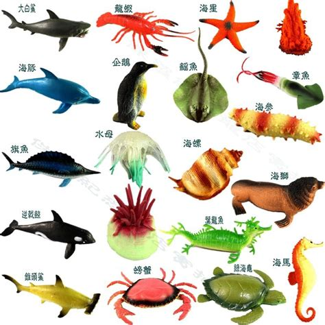 Animales marinos modelo animal de mar medusa pulpo ...