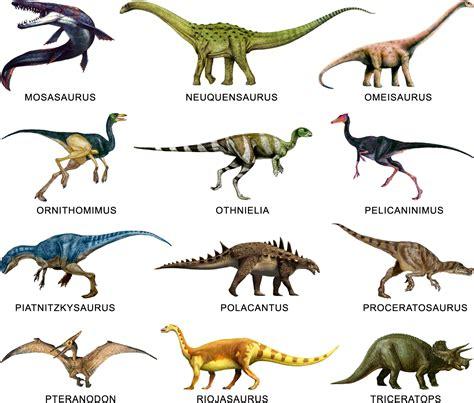 Animales Pre históricos: CLASIFICACION DE LOS DINOSAURIOS