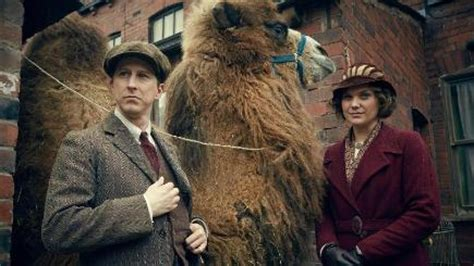 Animals  upstaged  Our Zoo cast | BT