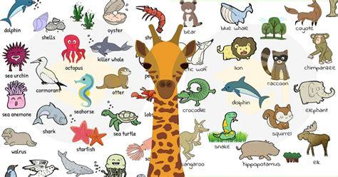 Animals Vocabulary in IELTS Writing | IELTS Vietop