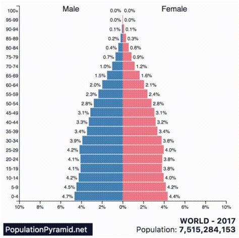 Animation: Population Pyramids of the 10 Largest Countries ...