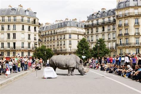 Animaux sauvages en ville par Renaud Marion