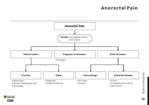 ANORECTAL PAIN   Blackbook : Blackbook