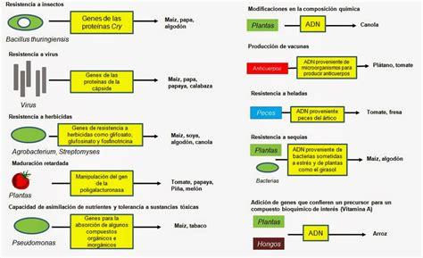 Aplicaciones de la Biología molecular en la Biotecnología ...
