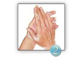 Aplicar técnica del lavado de manos | Lavado de manos clinico