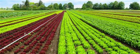 Aplicar tecnología a la agricultura