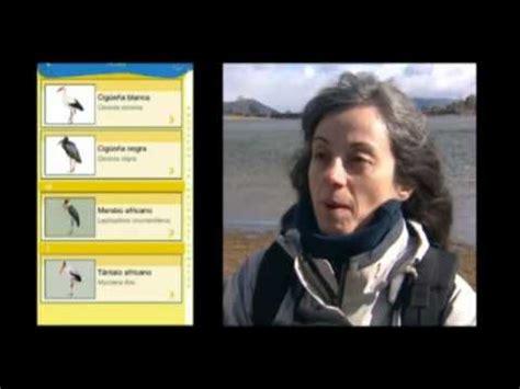App de la Fundación BBVA y SEO/Birdlife para observar aves ...