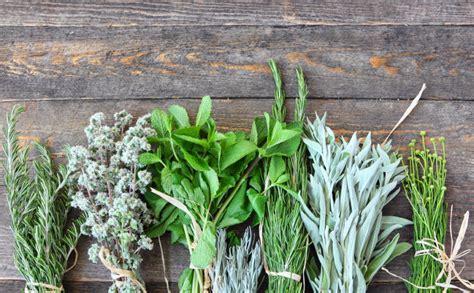 Aprende cómo cocinar con las mejores hierbas aromáticas