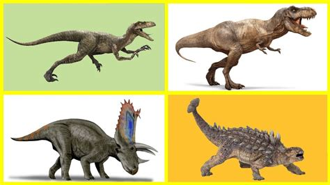 Aprender los Dinosaurios 1   Dinosaurios   Los Dinosaurios ...