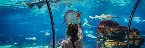 Aquarium de Barcelona   Horario, precio y ubicación en ...