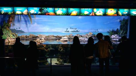 Aquarium de Barcelona: Opiniones, Info, Precios, Ofertas ...