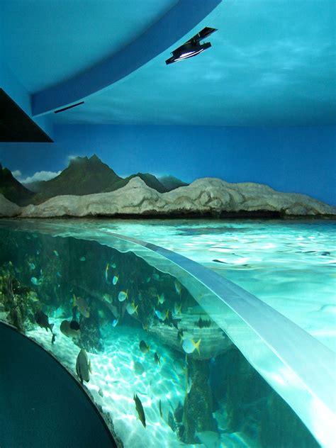 Aquarium de La Rochelle   Wiki   Everipedia