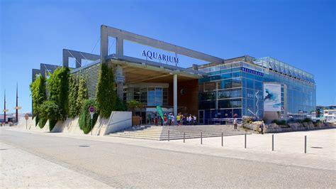 Aquarium La Rochelle La Rochelle   Expedia.be
